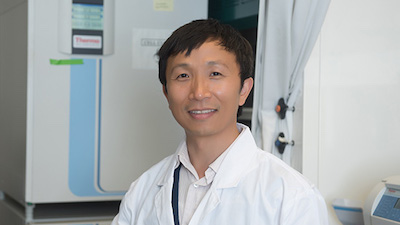 WSU PharmSci research funded by NIH may lead to new treatment for diabetic wound healing