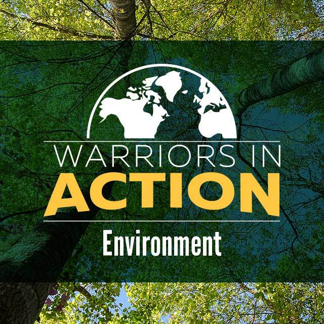 Warriors in Action: Environment